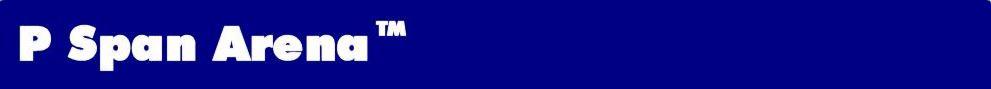 Pspan Header Logo